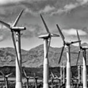 Wind Turbines Palm Springs Poster