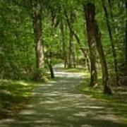 Winding Trails At Bur Mil Park  Poster