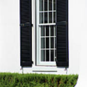 Window And Black Shutters Poster