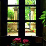 Window And Roses Poster