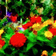 Window Box Of Flowers Poster