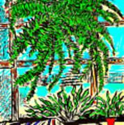 Window Loving Fern Poster