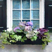 Window Shutters And Flowers Vi Poster