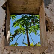 Window Tree Poster