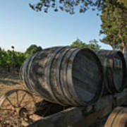 Wine Barrels At Vineyard Poster