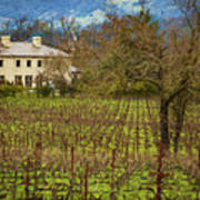 Wine Country California 1 Poster