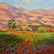 Wine Country II - Talley Vineyard Arroyo Grande Poster