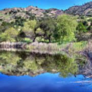 Winery Pond Reflections Poster