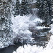 Winter Along The Creek Poster