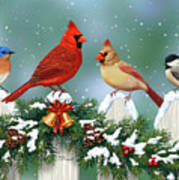 Winter Birds And Christmas Garland Poster