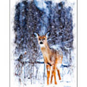 Winter Deer 1 Poster