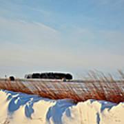 Winter Dunes Poster