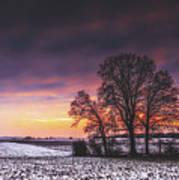 Winter Fields Poster