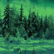 Winter Forest Dream At Dusk Poster