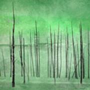Winter Green  7913green Poster