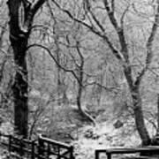 Winter, Ham Burn, Whitley Mill Poster