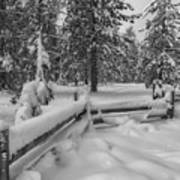 Winter In The Sierra Poster