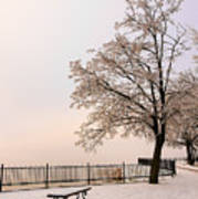 Winter Landscape 1 Poster