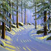 Winter Landscape Study 1 Poster
