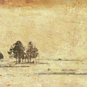 Winter Marsh Poster