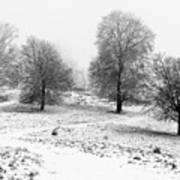 Winter Memories Poster