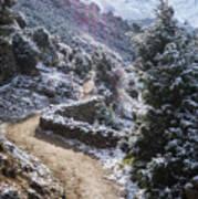 Winter Mountain Path Poster