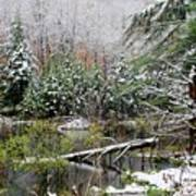 Winter On The Beaver Pond Poster