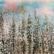 Winter Pastels Poster