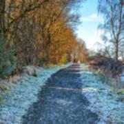 Winter Path In Scotland Poster