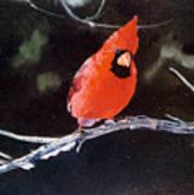Winter Perch Poster