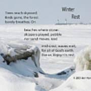 Winter Rest Poster