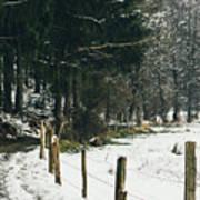 Winter Rural Pathway Poster