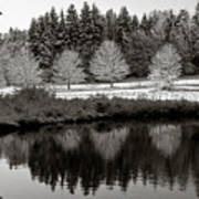 Winter Scene 3 Poster