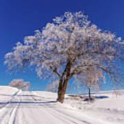 Winter Scene Genessee, Id Poster