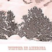 Winter Scene In The Colorado Rockies Poster