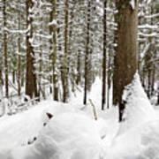 Winter Scene Print Poster