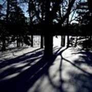 Winter Shadows 2 Poster