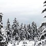 Winter Shangri-la Poster