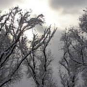 Winter Solstice Utah Poster