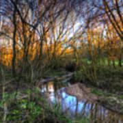 Winter Stream Sunset Poster