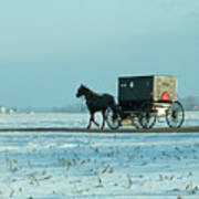 Winter Sun On Amish Buggy Poster