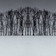 Winter Tree Symmetry Long Horizontal Poster