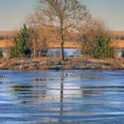 Winter Tree - Walnut Creek Lake Poster