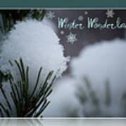 Winter Wonderland Poster