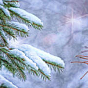 Winter Wonderland Poster