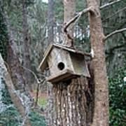 Winter's Empty Nest Poster