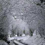 Winters Lane Poster