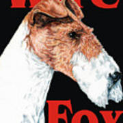 Wire Fox Terrier Poster