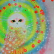 Wisdom Of  The Owl  Poster