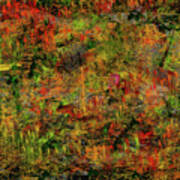 Wisps Of Autumn Poster